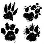 4 Grunge Paw Print (PNG Transparent)