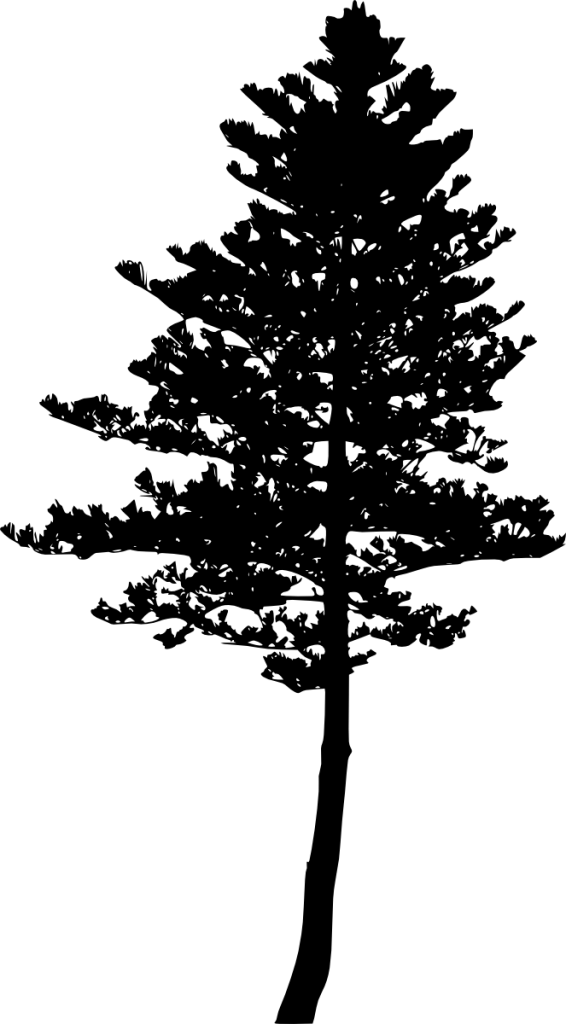10 Pine Tree Silhouette (PNG Transparent) Vol. 3 | OnlyGFX.com