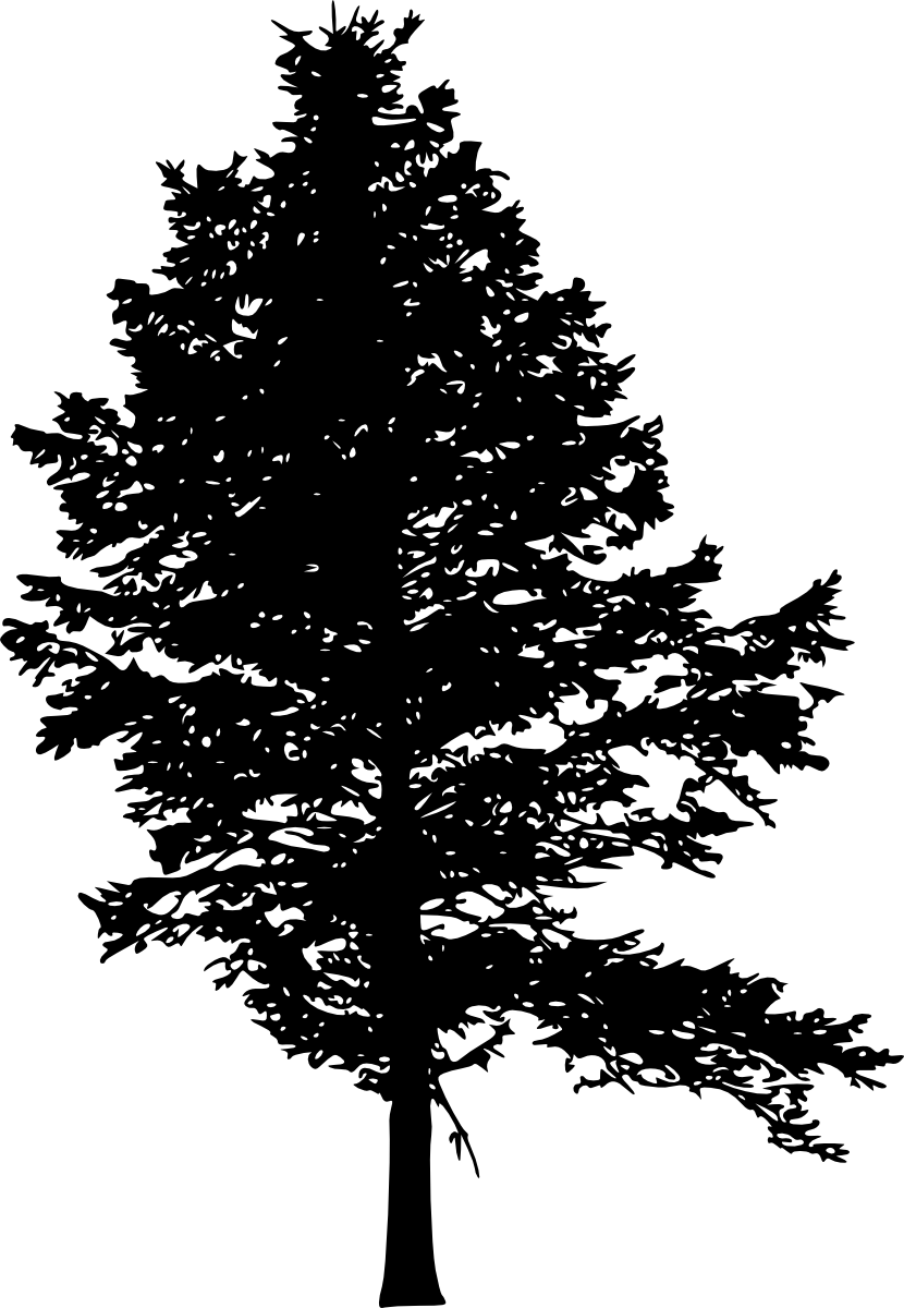 10 Pine Tree Silhouette (PNG Transparent) Vol. 3 | OnlyGFX.com