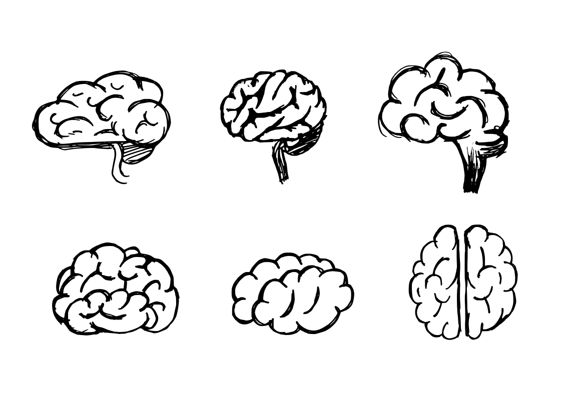 6 Brain Drawing (PNG Transparent) | OnlyGFX.com