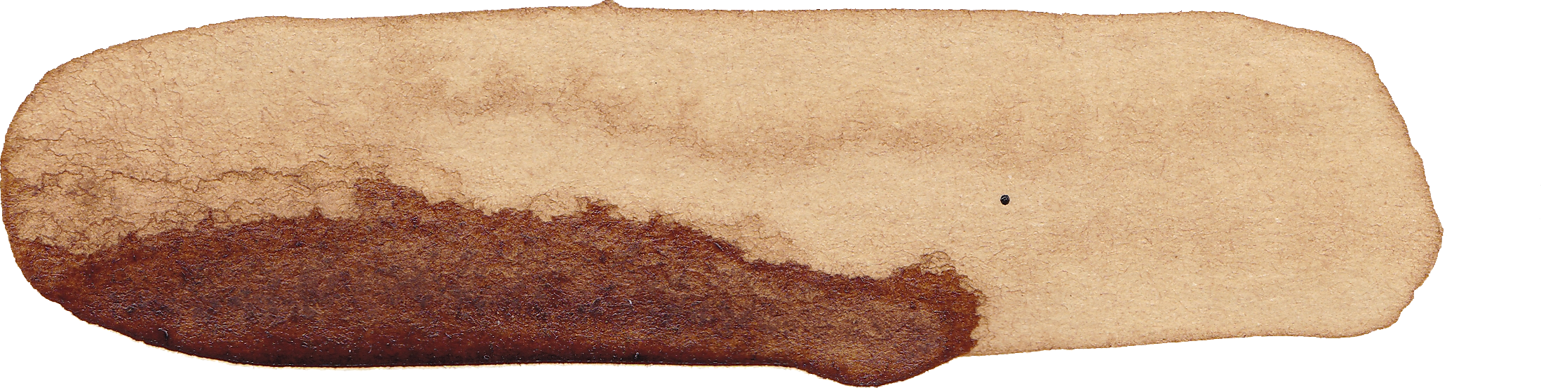 9 Coffee Watercolor Brush Stroke (PNG Transparent) | OnlyGFX com