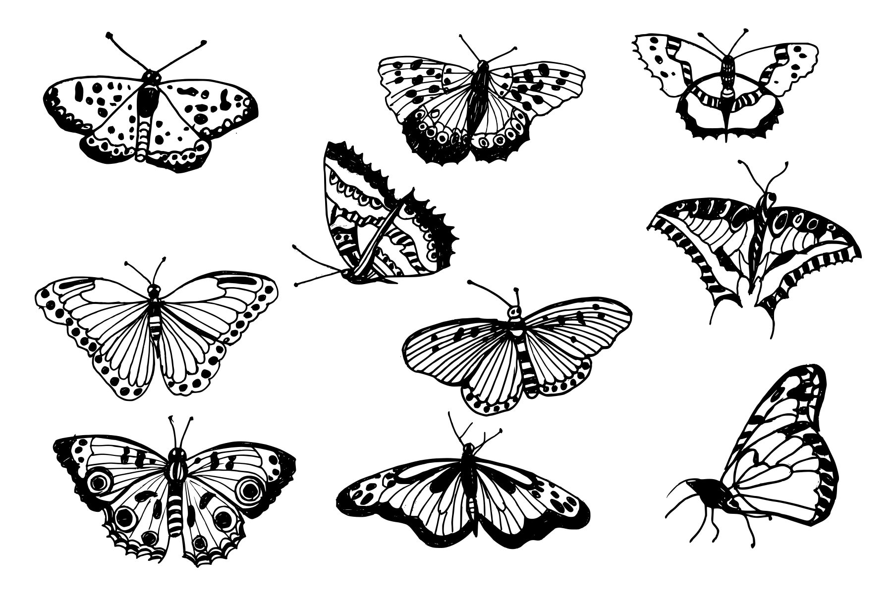 10-butterfly-drawing-cover.png