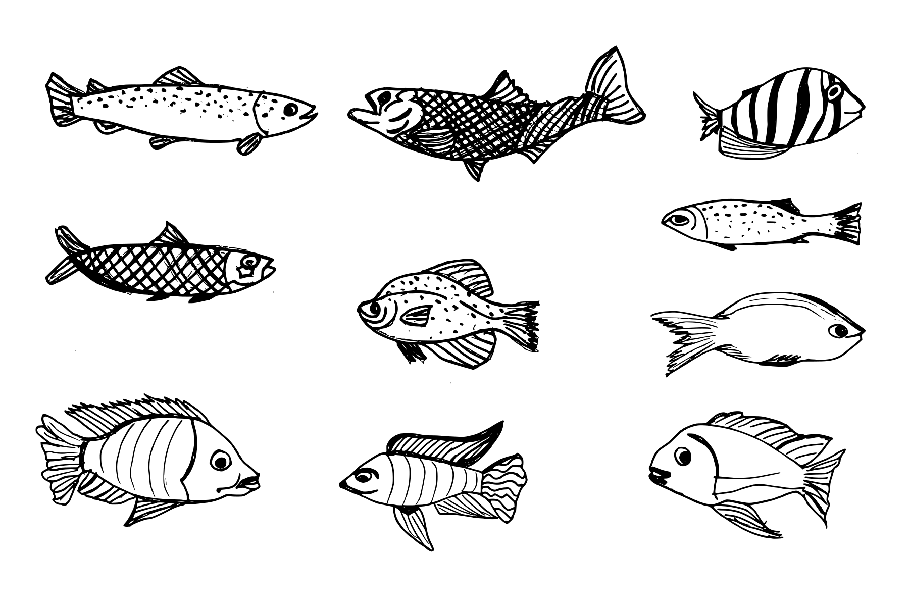 10-fish-drawing-cover.png