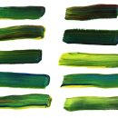 10 Green Paint Brush Stroke (PNG Transparent)