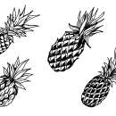 4 Pineapple Drawing (PNG Transparent)
