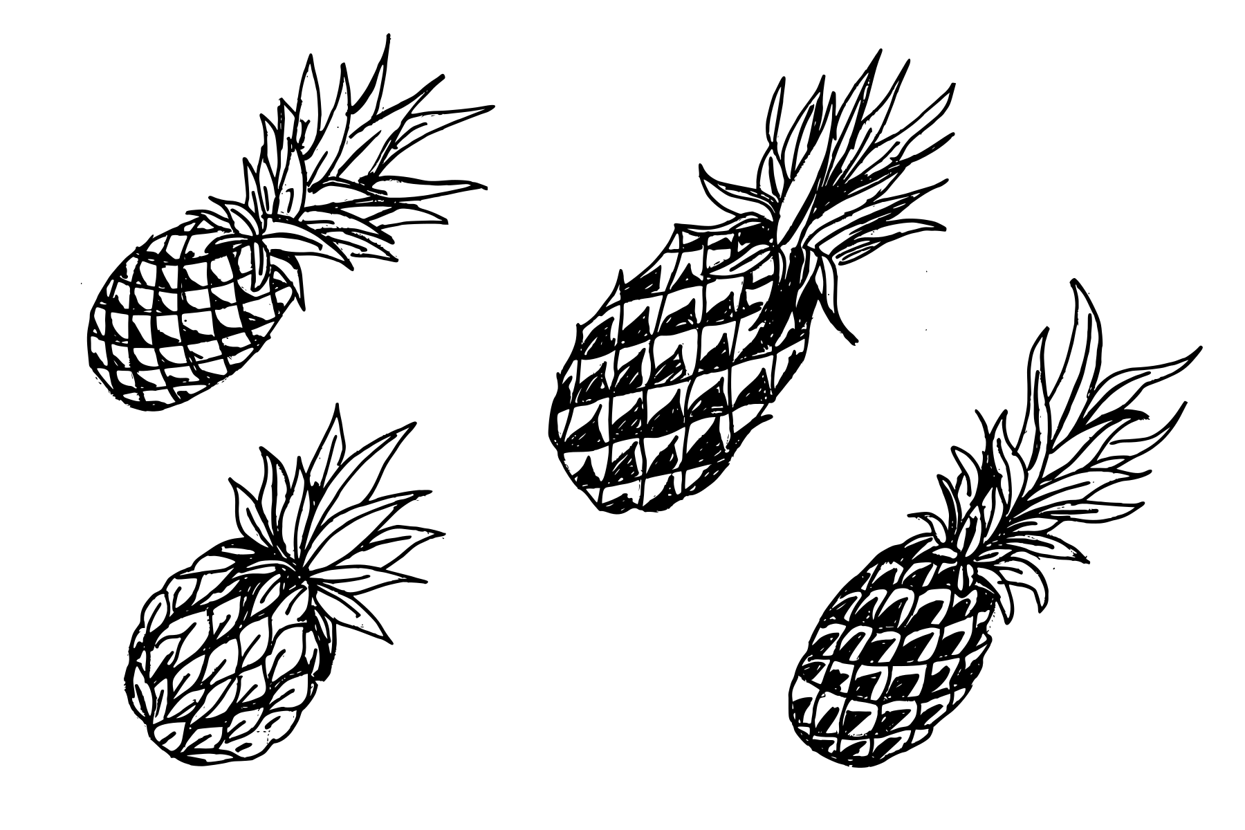 4-pineapple-drawing-cover.png
