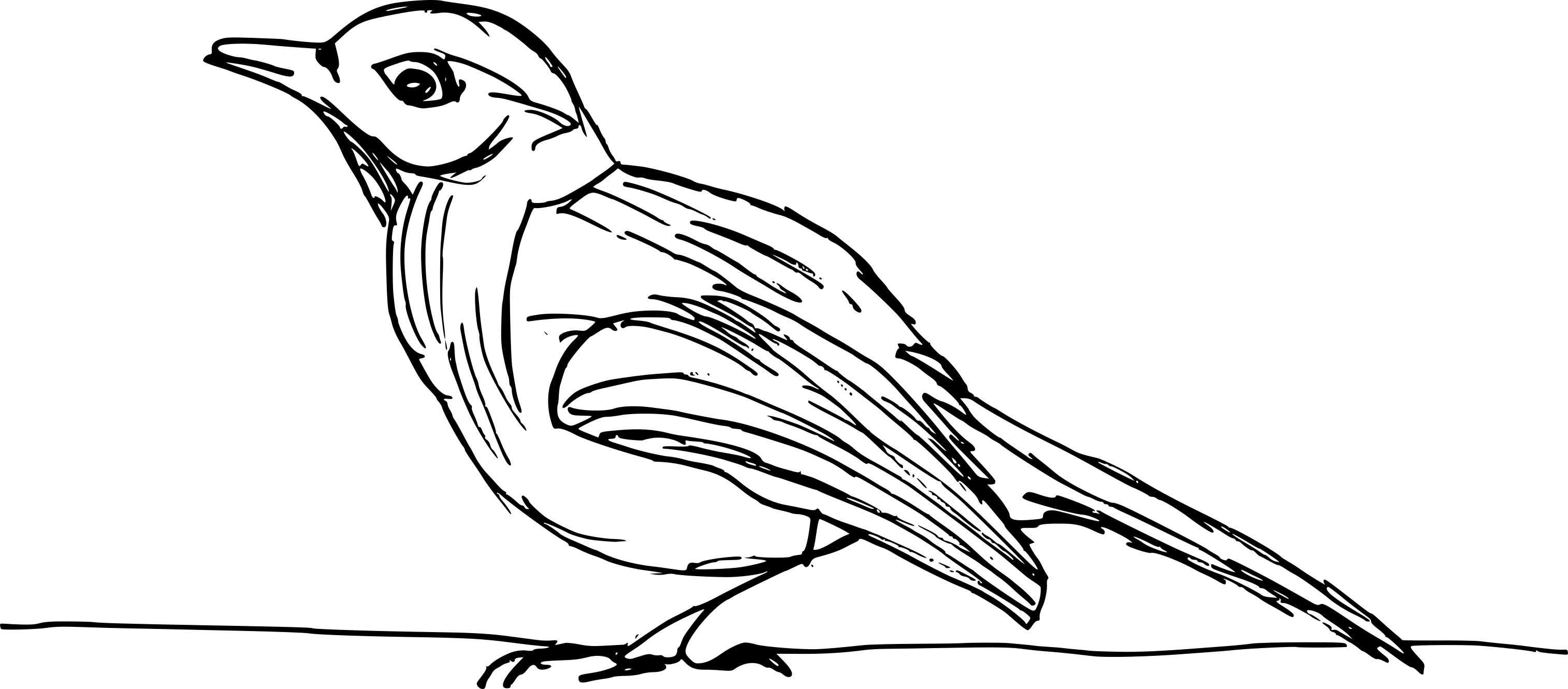 8 Bird Drawing Png Transparent Onlygfx Com