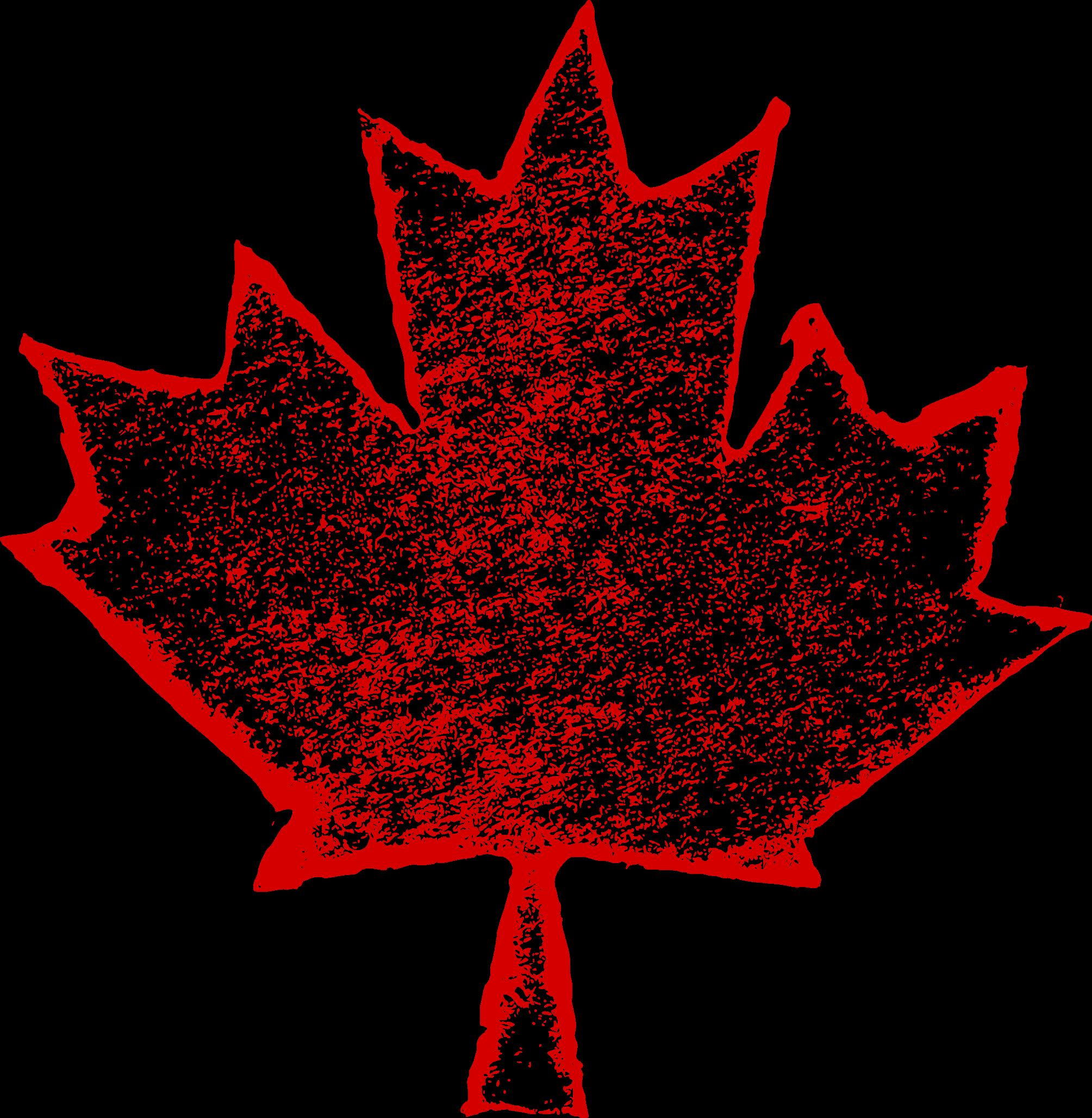 6 Grunge Maple Leaf Png Transparent Onlygfx Com