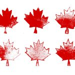 6 Grunge Maple Leaf (PNG Transparent)