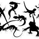 8 Lizard Silhouette (PNG Transparent)