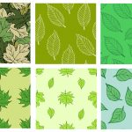 6 Leaf Pattern (PNG Transparent)
