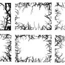 6 Rectangle Tree Branch Frame (PNG Transparent)