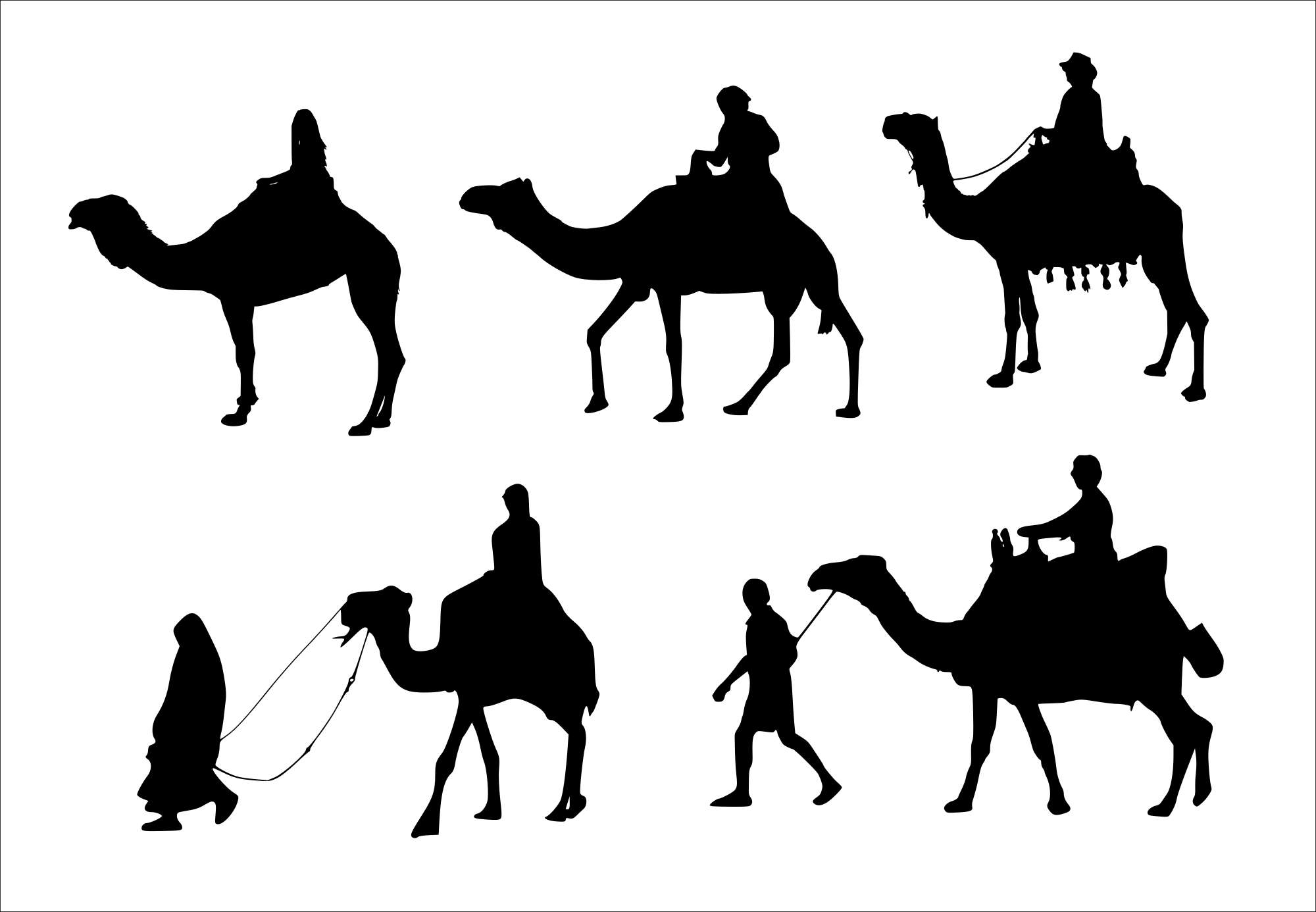 5-camel-rider-silhouette-cover.jpg