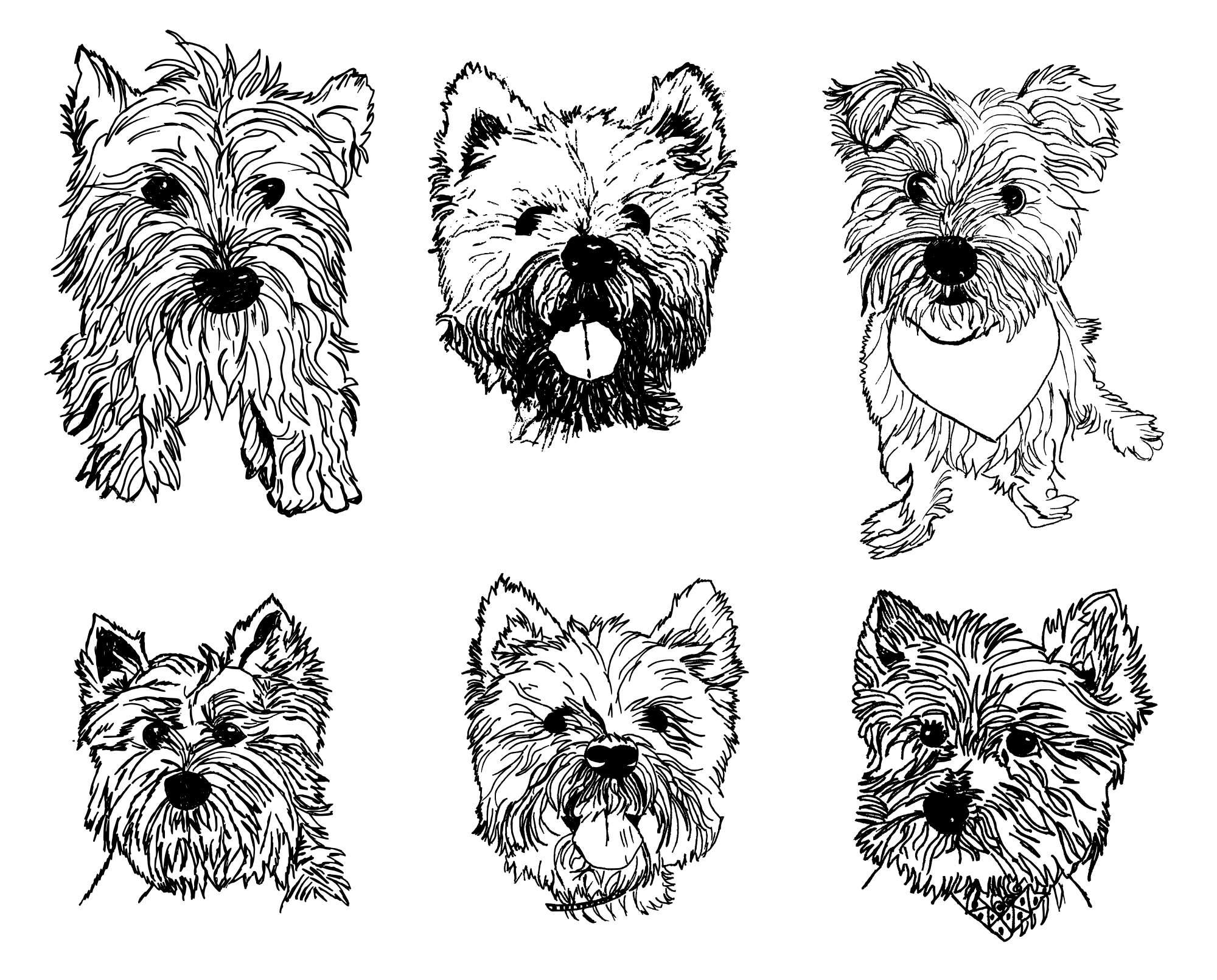 6-westies-dog-drawing-cover.jpg