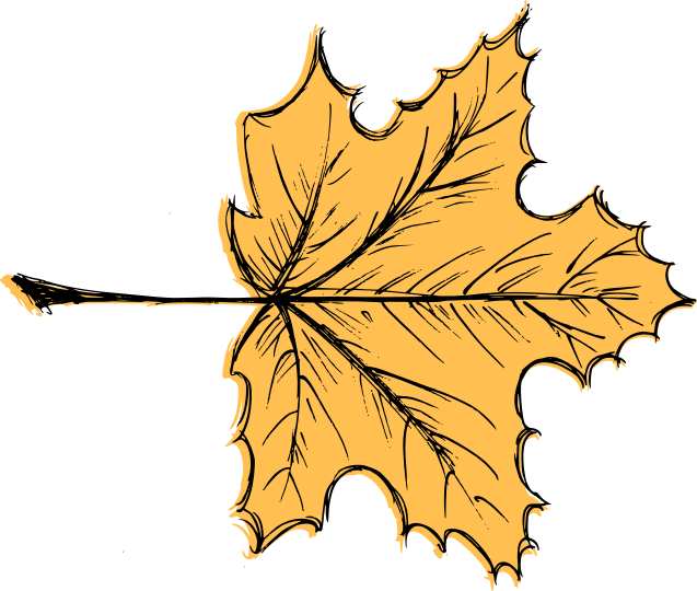 leaf-drawing-vector-3.png