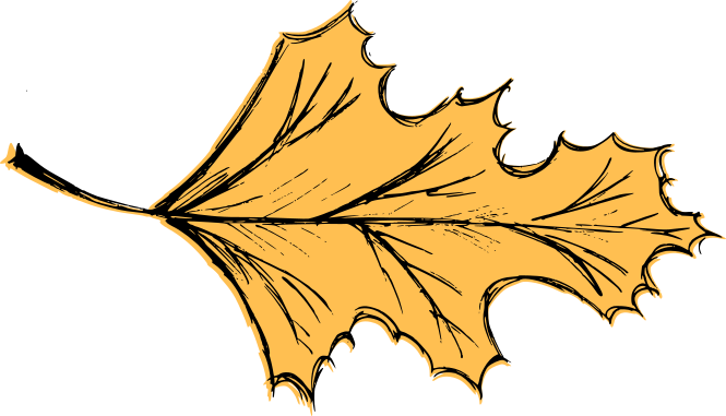 leaf-drawing-vector-6.png