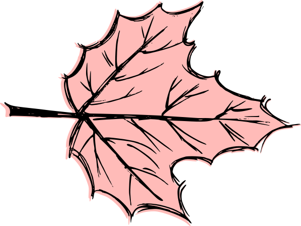 leaf-drawing-vector-7.png