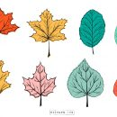 Leaf Drawing Vector (EPS, SVG, PNG Transparent)