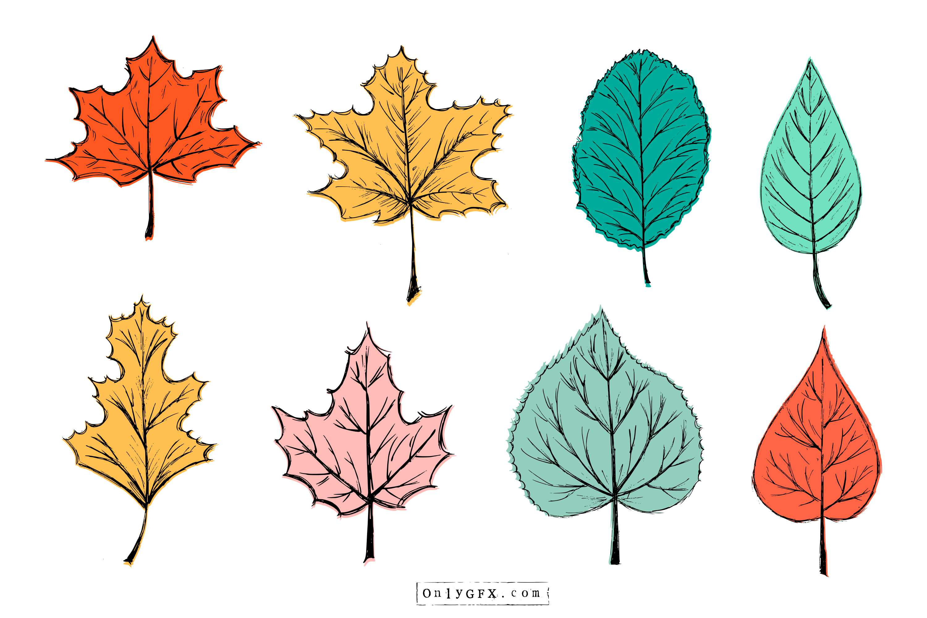 leaf-drawing-vector-cover.jpg