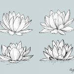 Lotus Drawing Vector (EPS, SVG, PNG Transparent)
