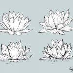 Lotus Drawing Vector (EPS, SVG, PNG Transparent)