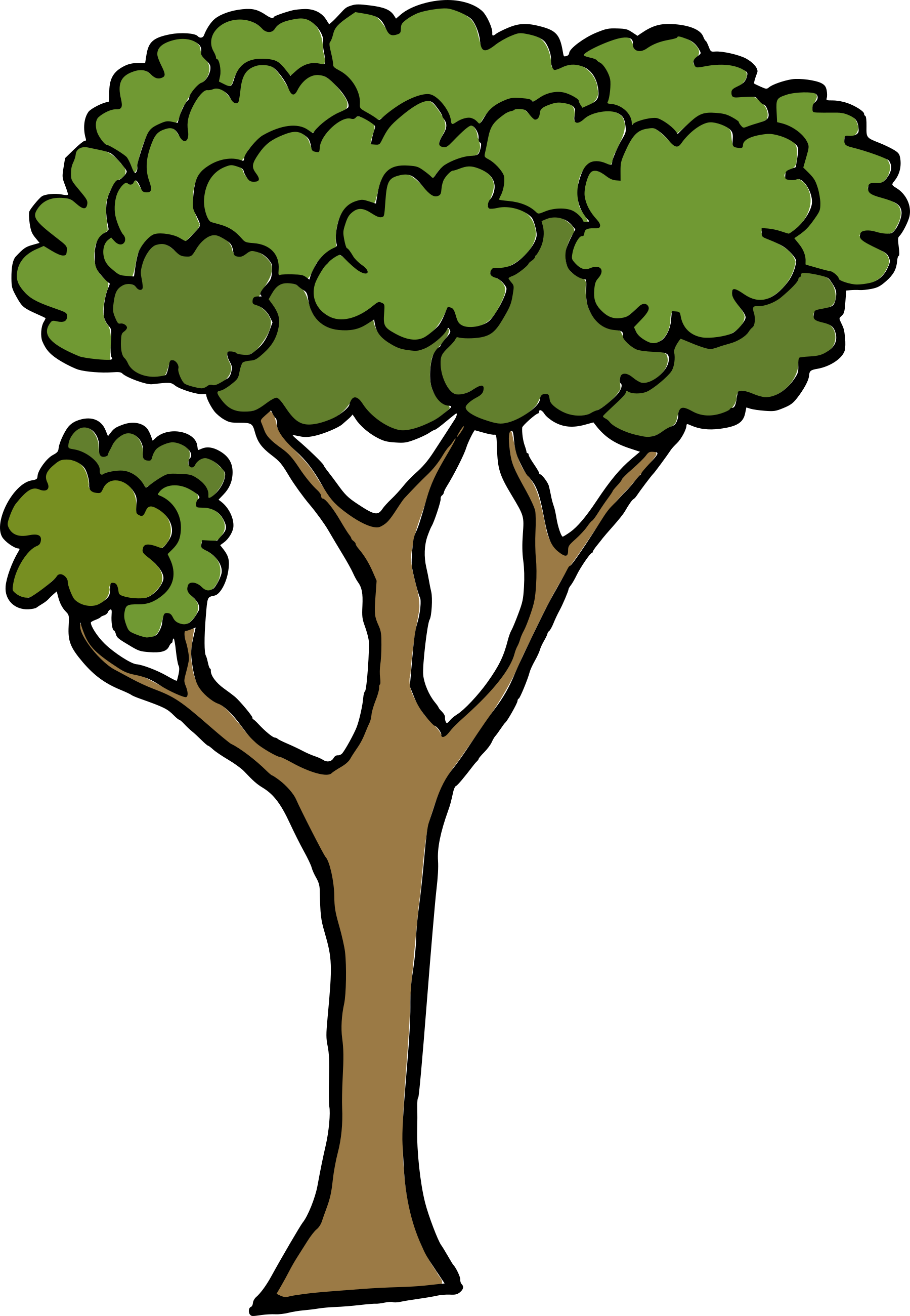 cartoon-tree-1.png