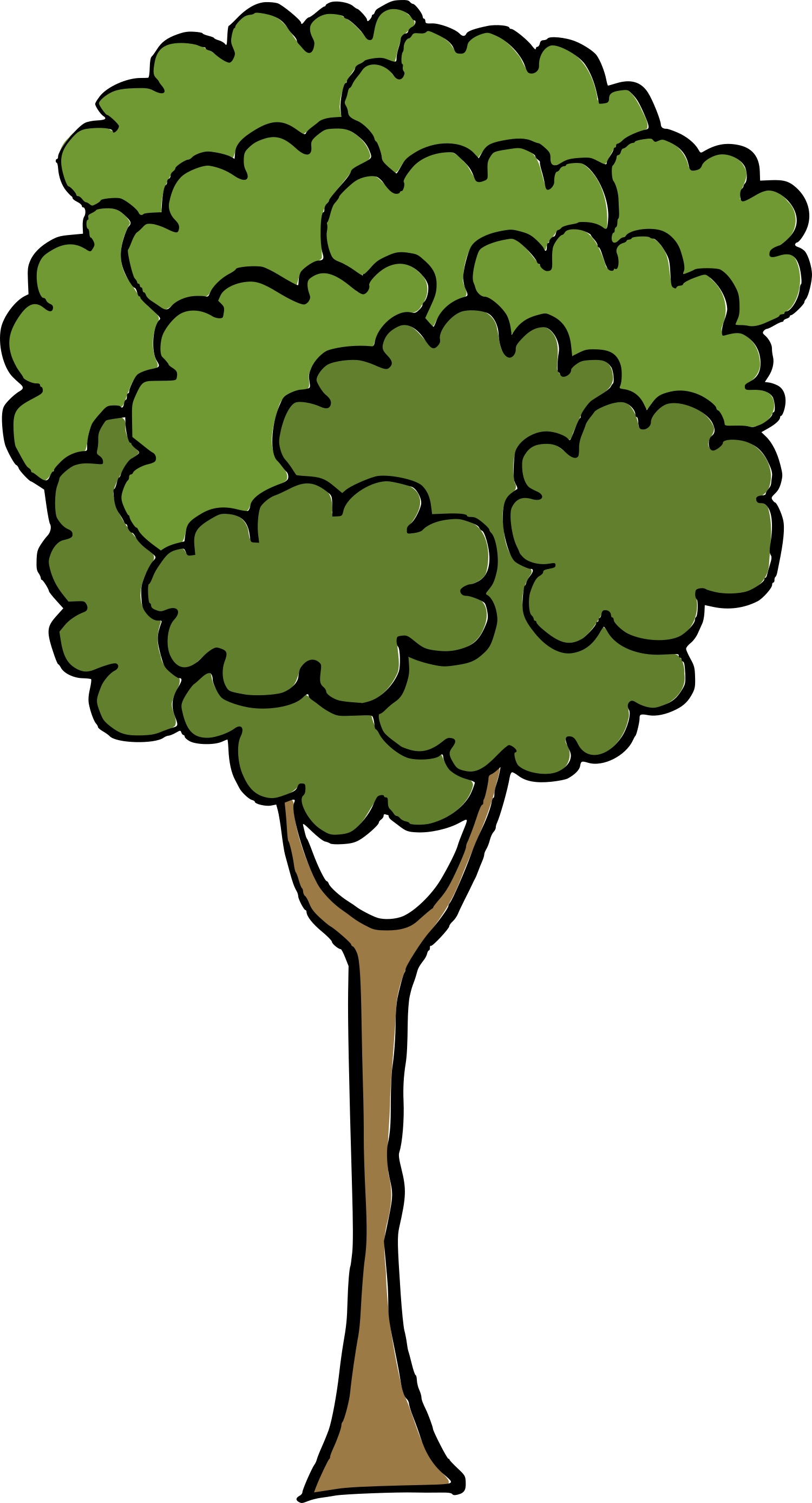 cartoon-tree-2.png