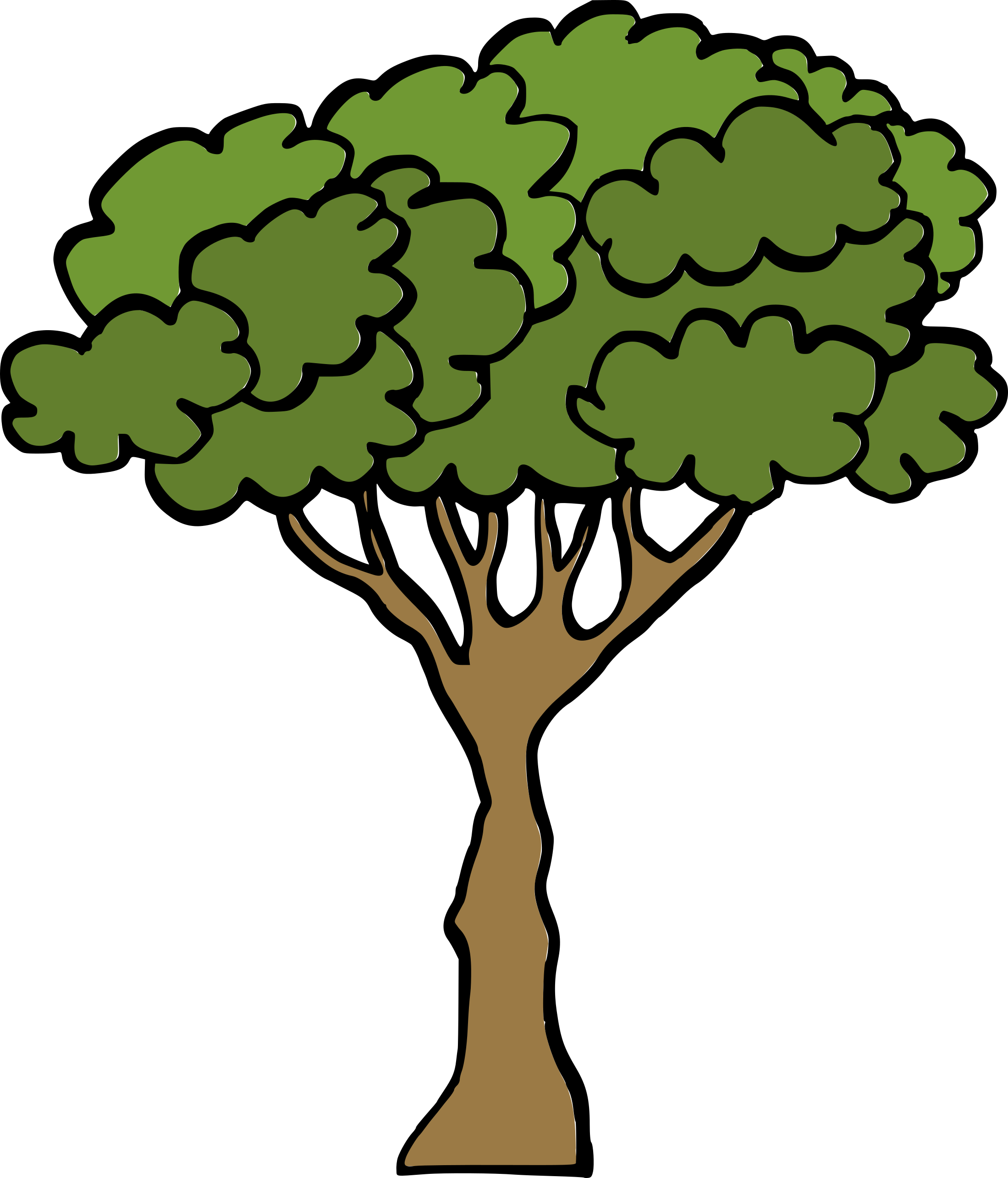cartoon-tree-3.png