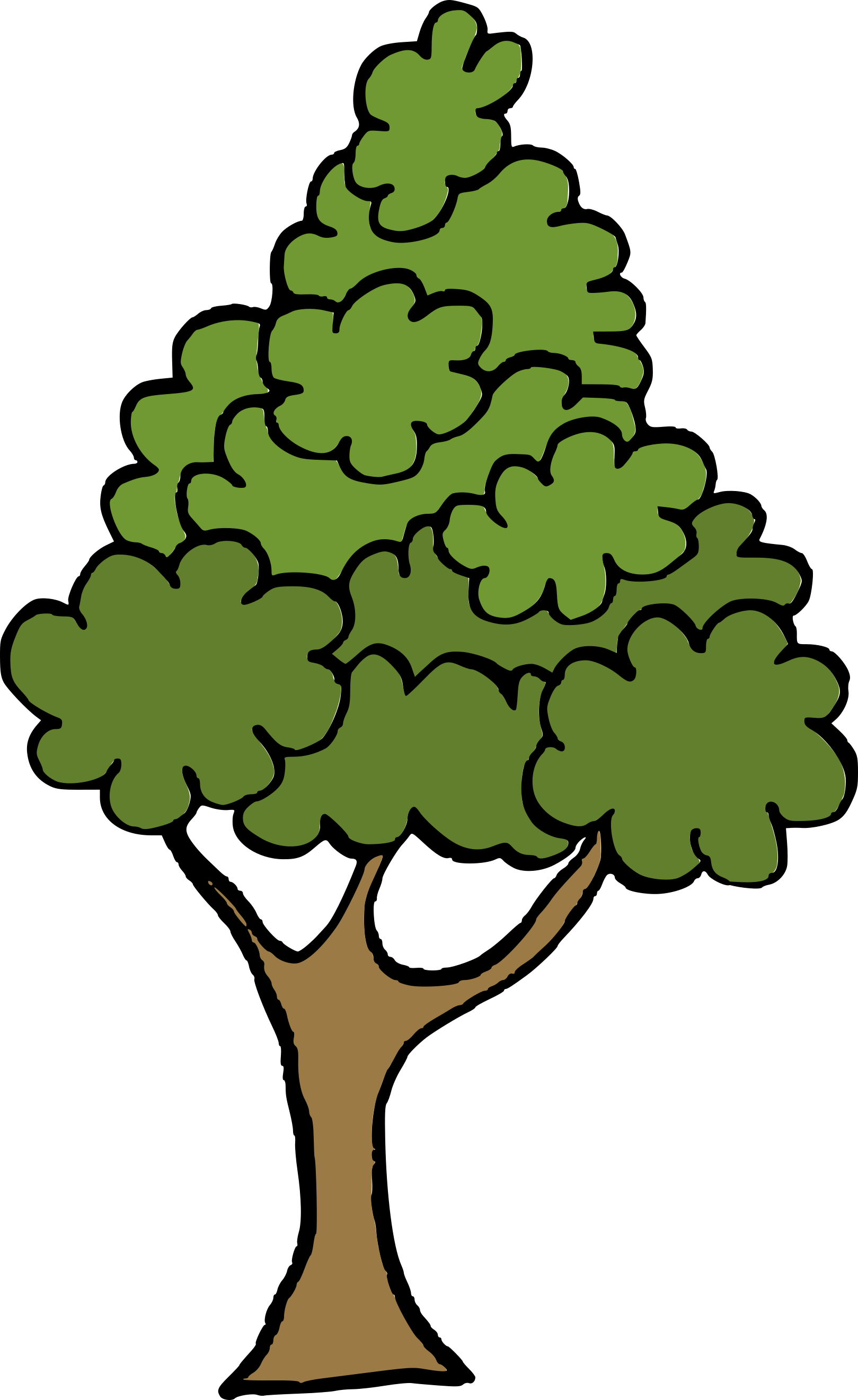 cartoon-tree-6.png