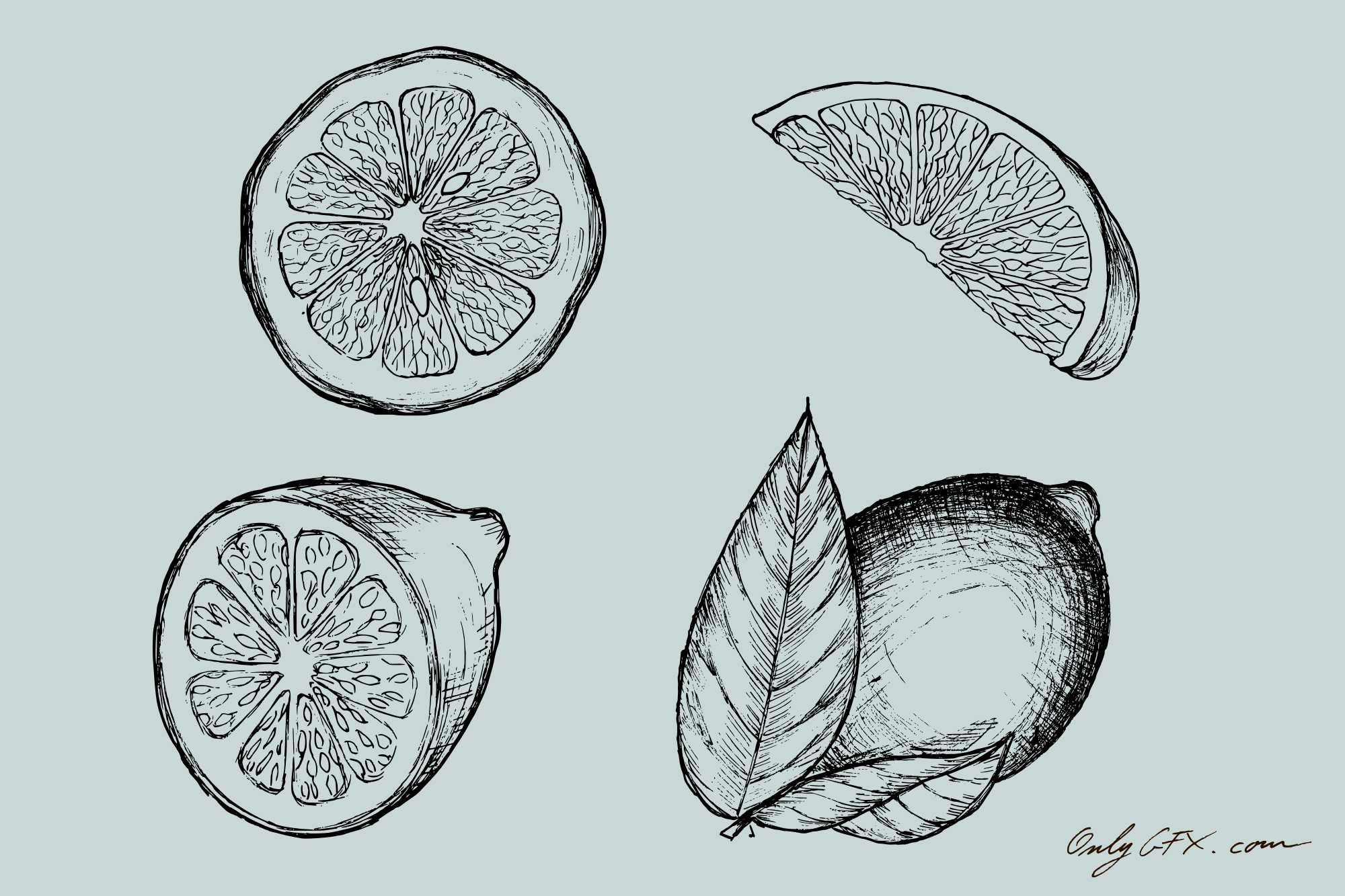 lemon-drawing-cover.jpg