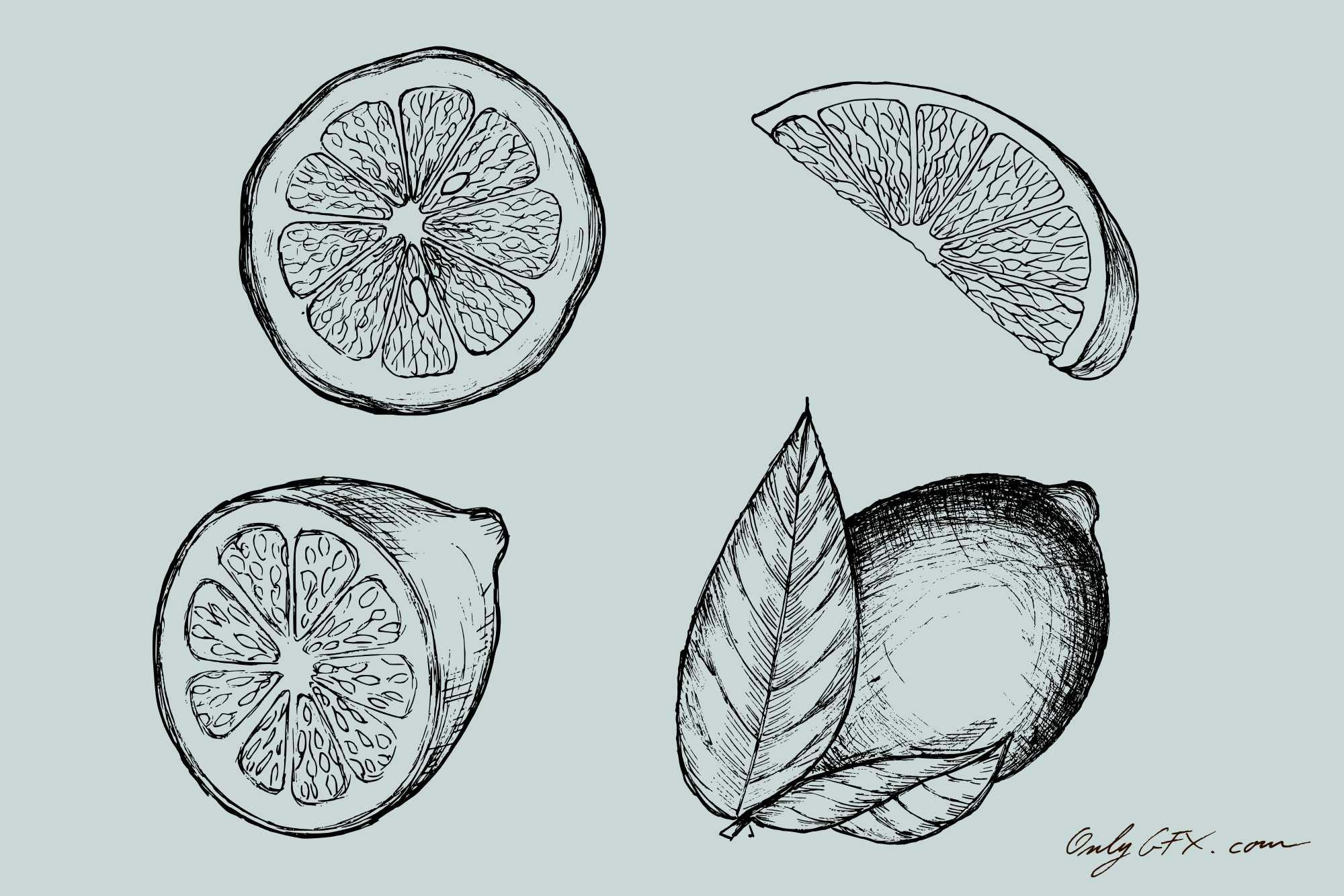 lemon-drawing-cover.jpg