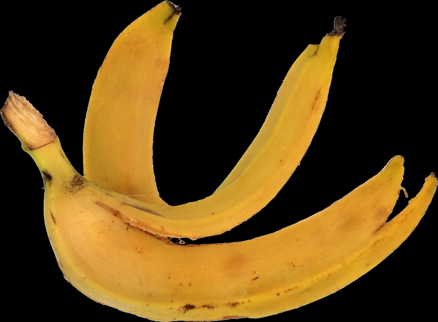banana-2-1.png