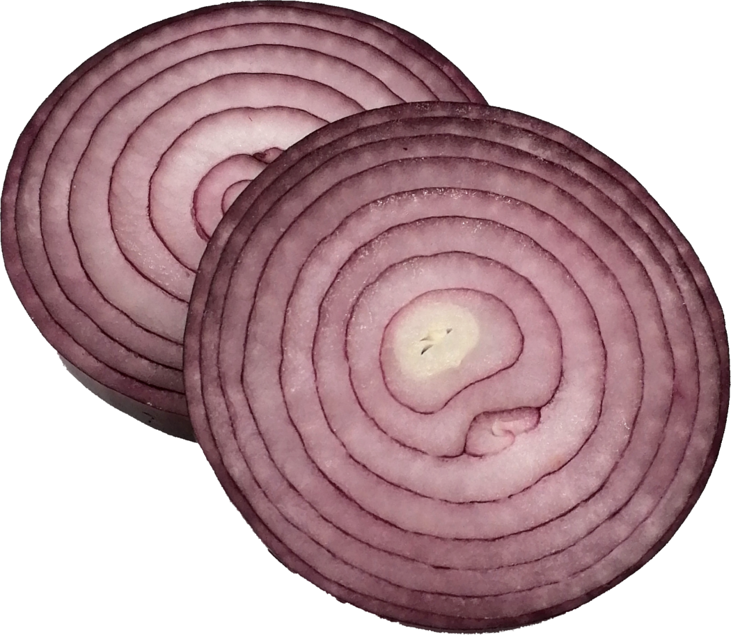 sliced-onion-5.png