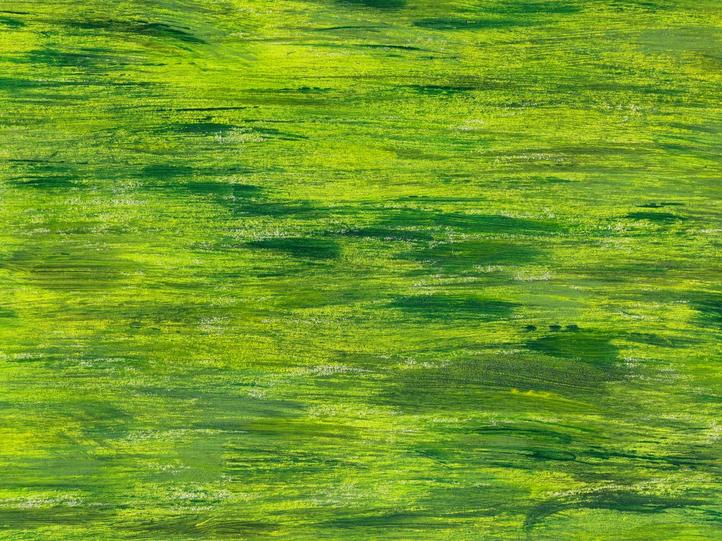 green-yellow-abstract-painting-backgrounds-4.jpg