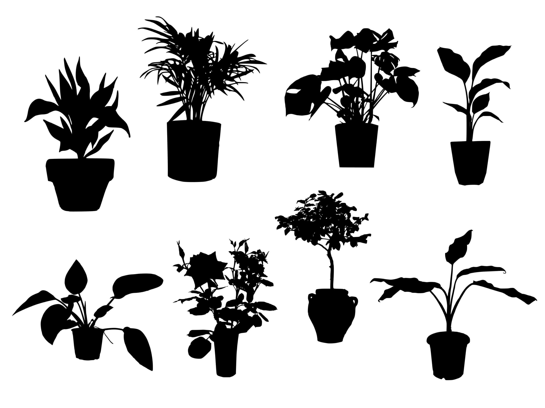 pot-plant-silhouette-cover.jpg