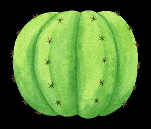 watercolor-cactus-2.png