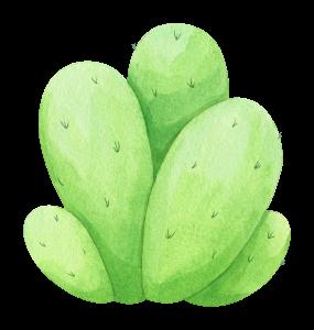 watercolor-cactus-4.png