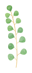 watercolor-eucalyptus-5.png
