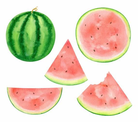 watercolor-watermelon-cover.jpg