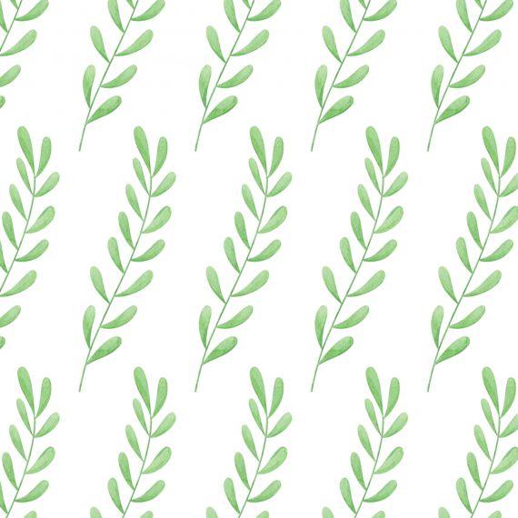eucalyptus-leaf-pattern-background-3.jpg