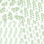 Eucalyptus Leaf Pattern Background (JPG)