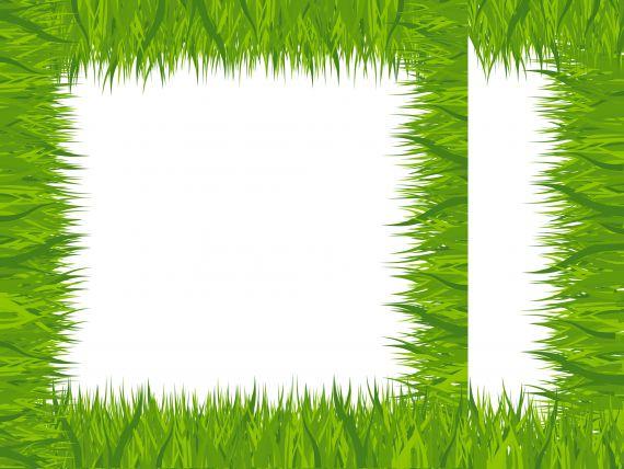 grass-frame-cover.jpg