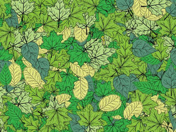 green-leaf-background-3.jpg