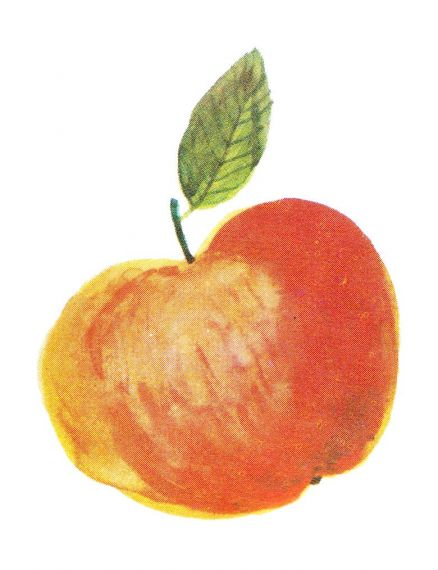 Apple Watercolor PNG Transparent