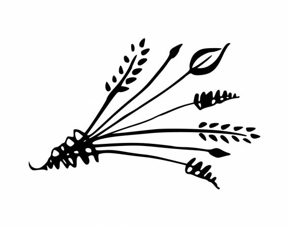 Calligraphy Flower Decoration PNG Transparent SVG Vector