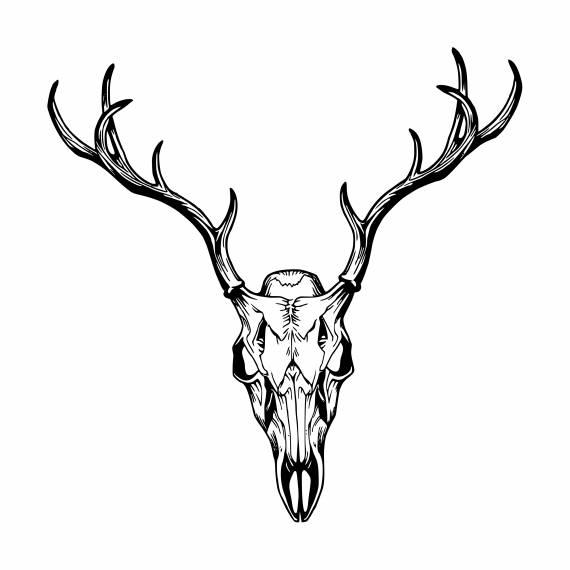 Deer Skull PNG Transparent SVG Vector