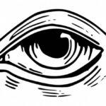 Eye Drawing PNG Transparent SVG Vector