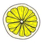 Lemon Cut Half Slice PNG Transparent