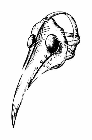 Plague Doctor Mask PNG Transparent SVG Vector