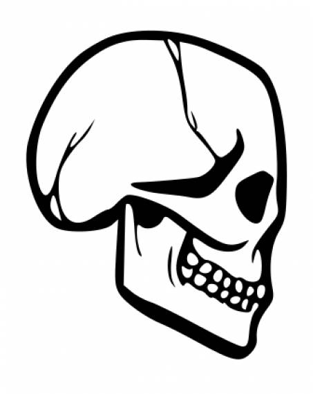 Skull Drawing Side View PNG Transparent SVG Vector